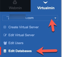 virtualmin edit database menu